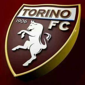 Милан — Торино: прогноз на матч Серии А (17 февраля 2020)