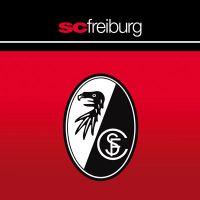 Фрайбург – Вердер. Прогноз на матч Бундеслиги (25.11.2018)