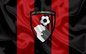 Борнмут—Ньюкасл: прогноз на матч английской Премьер-Лиги (1 июля 2020)