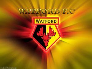 Уотфорд – Вулверхэмптон: прогноз на матч английской Премьер-Лиги (1 января 2020)