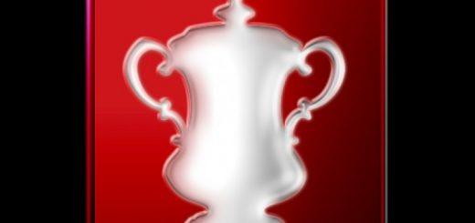 Вест Бромвич – Брайтон. Прогноз на матч Кубка ФА. Англия (07.02.2019)