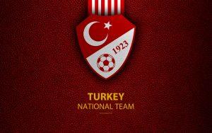 Турция – Франция. Прогноз на матч отборочного турнира Евро-2020 (08.06.2019)