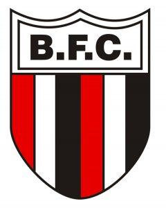 Ботафого – Аваи: прогноз на матч чемпионата Бразилии (12 ноября 2019)