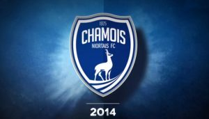 Кан — Ньор: прогноз на матч Второй лиги Франции (4 февраля 2020)